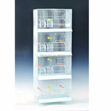 Petit perroquet oiseau pinson oiseau canari volière <span class=keywords><strong>CAGE</strong></span> fil élevage oiseau <span class=keywords><strong>CAGE</strong></span>