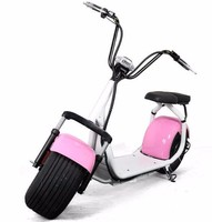 Top sale electric scooter harley style harley bike 1000W harley citycoco scooter with seat for youngmen