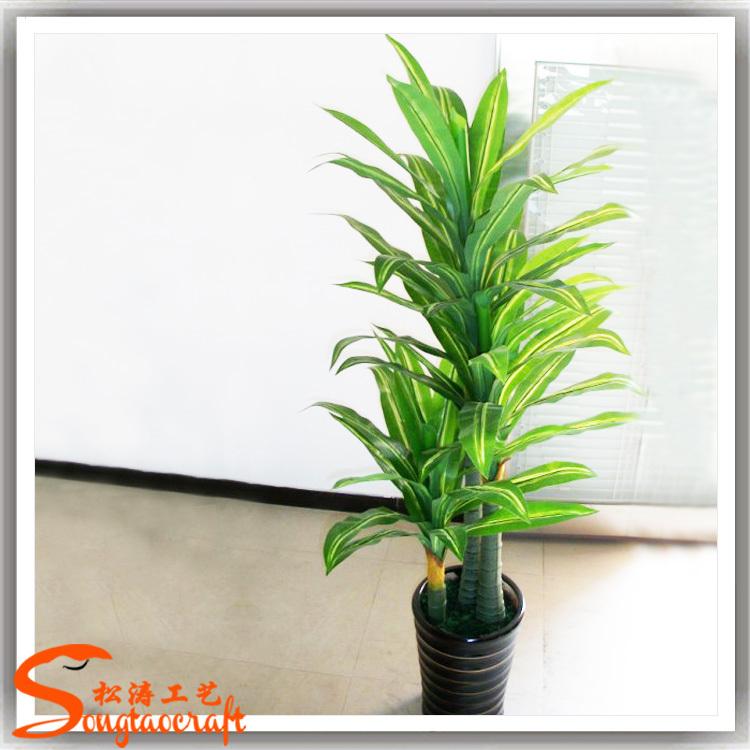 Plantas decorativas para interiores bombillas macetas - Plantas de interior que purifican el aire ...
