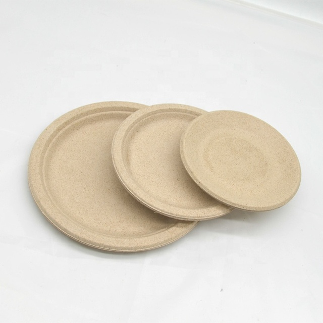 Factory Wholesale Eco Friendly Sugarcane Dinner Disposable Plates