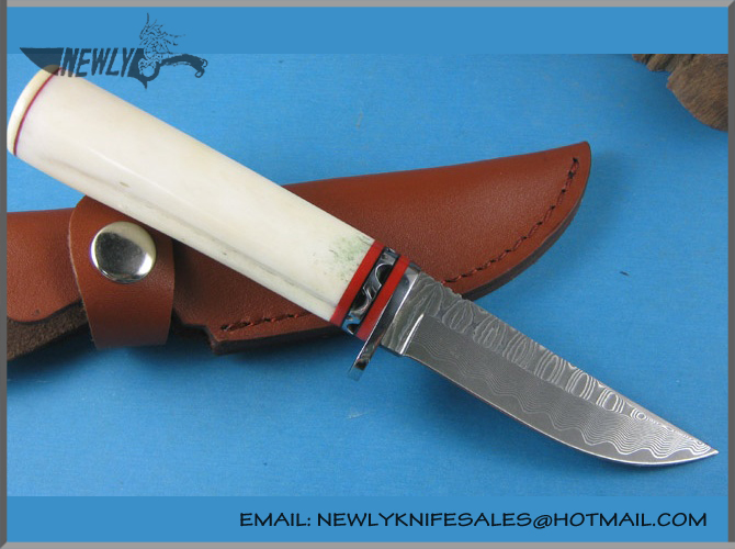 Handmade Collection Damascus Steel Fixed Knife Camel Bone With Leather Sheath