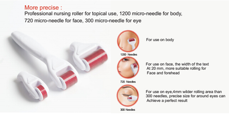 300/720/1200 pins microneedle 4 in 1 derma roller (F019F)