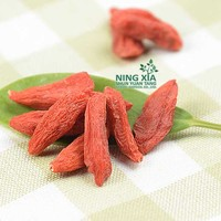 special supply organic dried goji berry - china factory