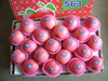 Fresh Fuji Apple Supplier in China