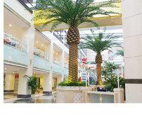 SJH149908 medjool date palms date palm trees plastic artifiicial date palm