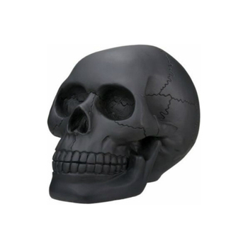 Matt black skull head collectible skeleton decoration statue