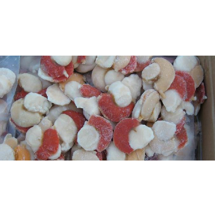 Dandong Frozen Food Grade Cold Storage For Seafood Scallop Meat