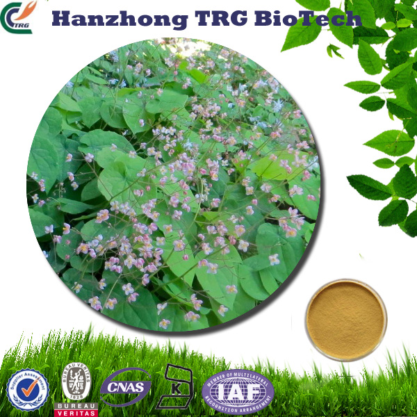 natural brown epimedium extract with icariin 60% in bulk with high quality
