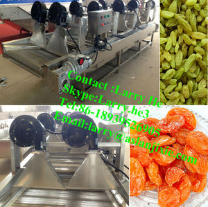 air fan dryer for raisins/dried fruit dewatering machine/dried apricot slices making machine