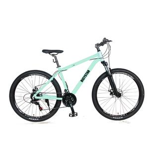 35ccd8f11 Steel Bike Frame 022