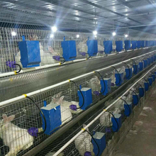 China offer easy clean steel commercial rabbit cages far animal farm