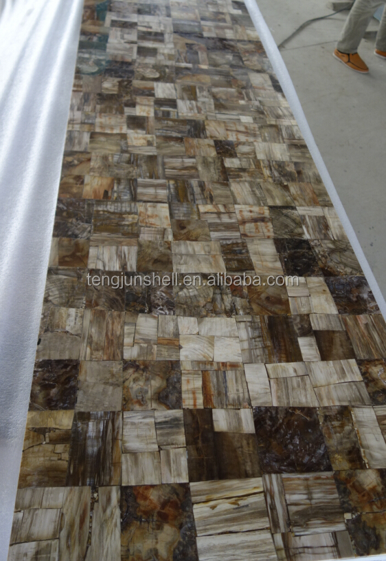 Indonesia petrified Wood Fossil stone 100%Polished big slab for wall decoration