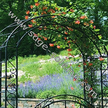 Garden Wedding Arch,Metal Wedding Arch - Buy Garden Arch,Wedding ...