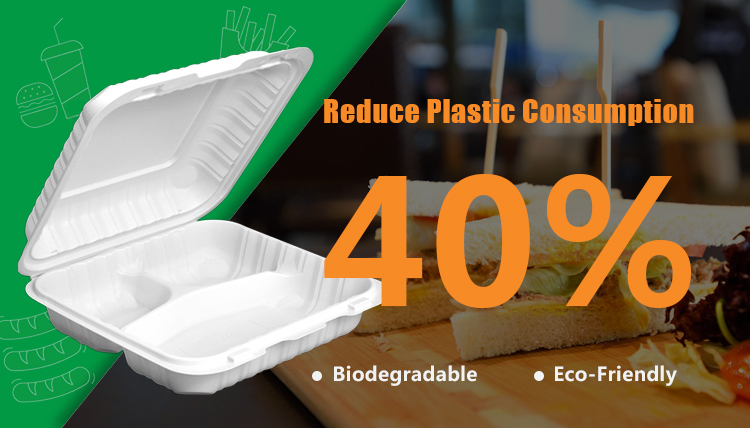 FDA Food Grade Klappdeckel Eco Friendly To Go Lebensmittelbehälter