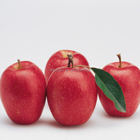 best price fuji apple fresh fruit