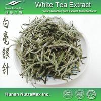 Food Grade White Tea Leaf Powder/White Tea Powder UK