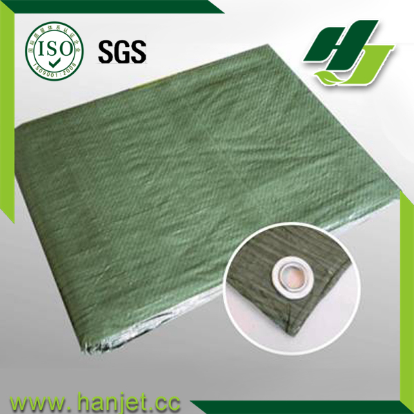Plastic&waterproof PE fabric/tarpaulin sheet for camping mat&car cover with high quality and cheap price