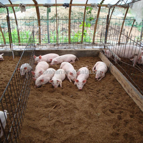 China Pig Supplements, China Pig Supplements Manufacturers