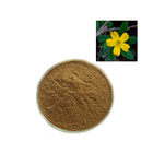 Men's Healthy Care Damiana Extract 100:1 Damiana Leaf Damiana Powder