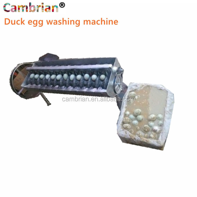 Semi automatic egg washing cleaning machine with low price