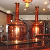 500l Brewery Pub Micro Craft Beer Brewing Equipment