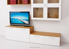 wooden frame glass hinge door TV stand