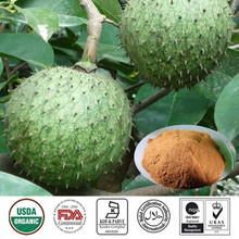 high quality free samples 4:1 10:1 20:1 graviola annona muricata