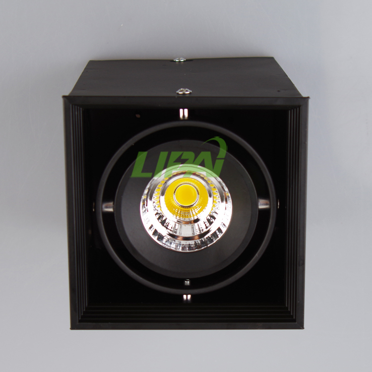 led grille light 20W 30W led beans gall light led downlight 2 years warranty