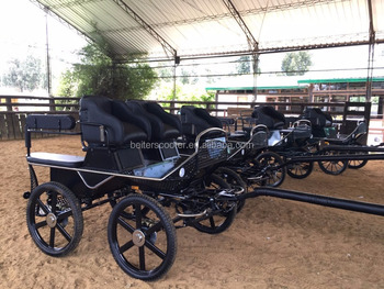 Stainless steel outside, Marathon carriage for sale, horse cart factory