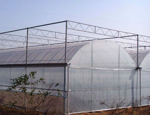 Tropic plastic film agricultural greenhouse/invernadero for greens hydroponic growing