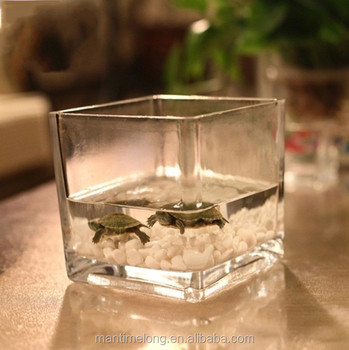 Creative Home Supplies Cube Shape Fish Bowl Clear Glass Vase Buy