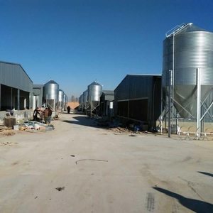 poultry galvanized steel chicken storage feed silo for sale