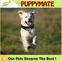 New design pet collar, GPS tracking dog collar, GPS tracking cat collar