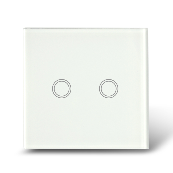 Cool blank panel sensor touch 2gang light smart home switch