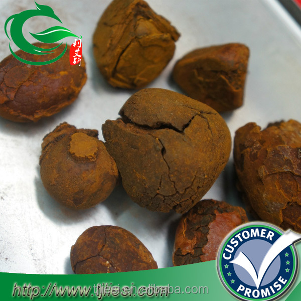 supply cattle gallstones with low price