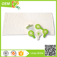 Customized cotton magic towels-compressed cloth
