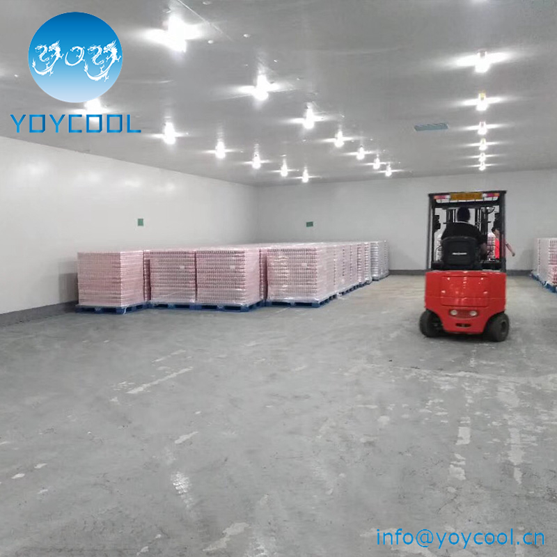 ideal temperature for cold storage room cold storage plant in gujarat cold storage units in kolkata