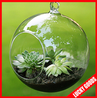 round shape decorative glass hanging ball vase wholesale