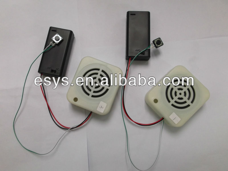 electronic device box/recordable voice box