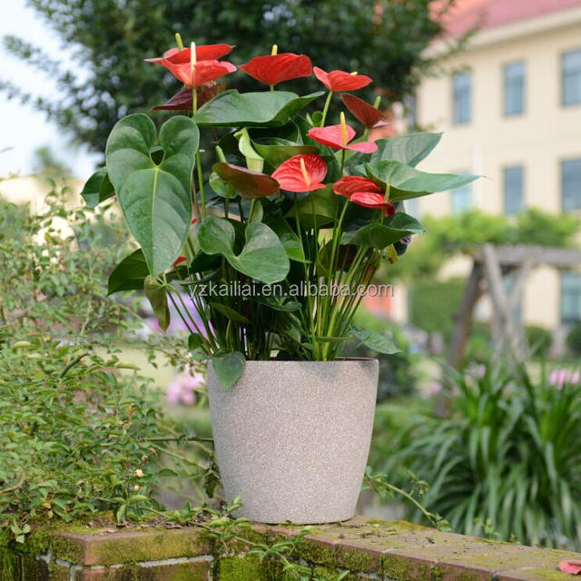 vase containers plants ideas planter home pot flower planters pots tremendous vases outdoor for plant large exterior extra interior uk using garden