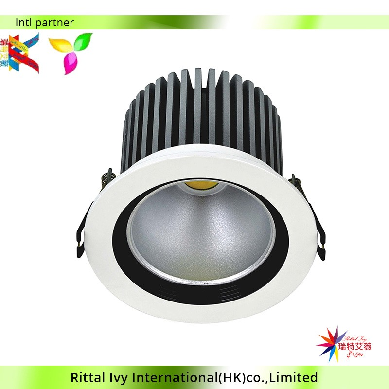 High Quality Aluminium Alloy Led Lights 10W Led Downlight 12 Pieces / Carton
