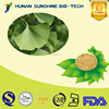 Herbal Raw Material Health Care Products Ginkgo Biloba Leaf Extract