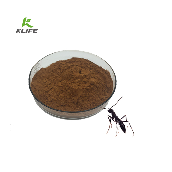 Health-Care Product 100% Natural Black Ant Extract Powder with Private Label Provided by ISO Manufacture
