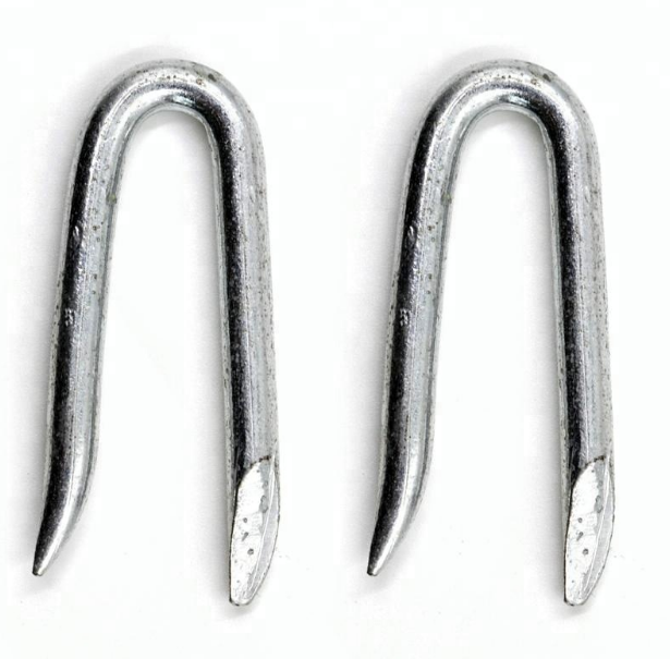 GALVANIZED U SHAPE IRON <strong>NAILS</strong> 50X4 PACKING WITH BUCKET 15KG PER PACKAGE
