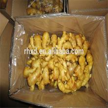 Farmer for Buyer of Ginger 250G 30IBS PVC to America