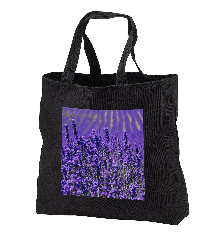 tb_225871 Danita Delimont - Flower - Lavender farm, Furano, Hokkaido Prefecture - Tote Bags