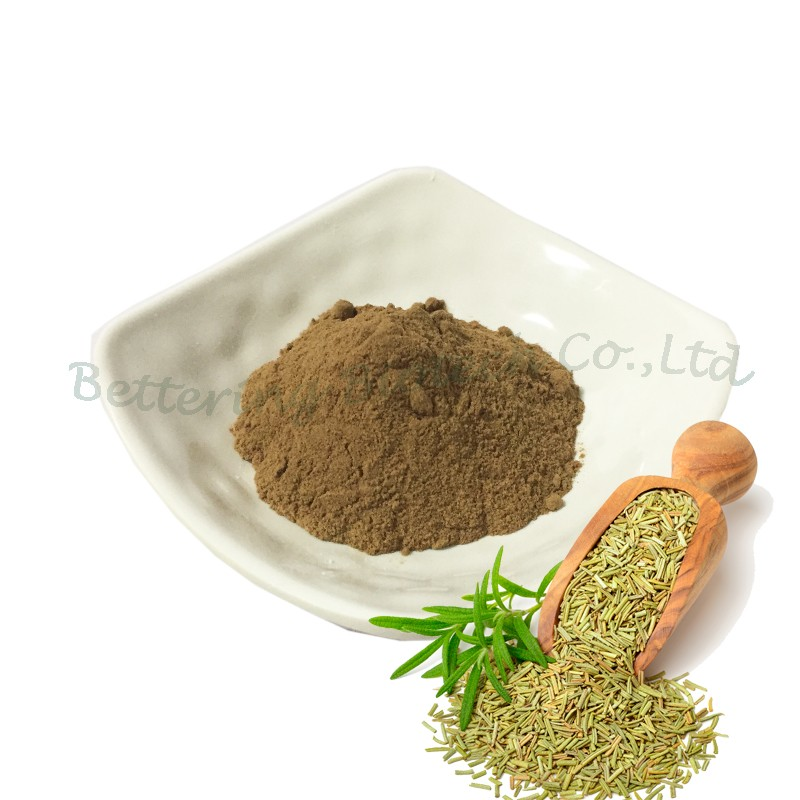 Factory Supply Watersoluble Carnosic Acid Rosemary Extract Powder