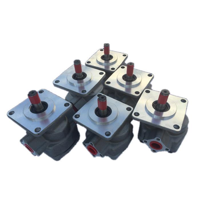 China hydraulic gear motor