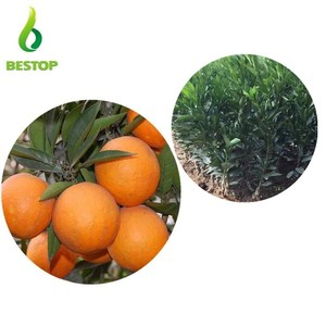 tian cheng miao 2017 Latest honey sweet citrus orange seedings for sale