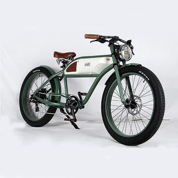 Clical Shape Bicycle Vintage Electric Bike
